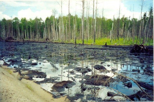 Ремедиация физически нарушенной и загрязненной нефтью почвы