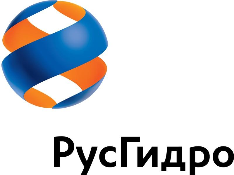 Член Правления РусГидро К.Бессмертный увеличил свою долю в уставном капитале компании