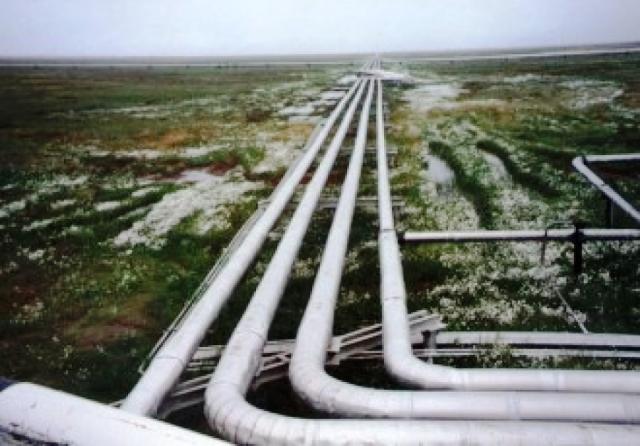 Количество газифицированных сел в Московской области увеличилось на 7%.