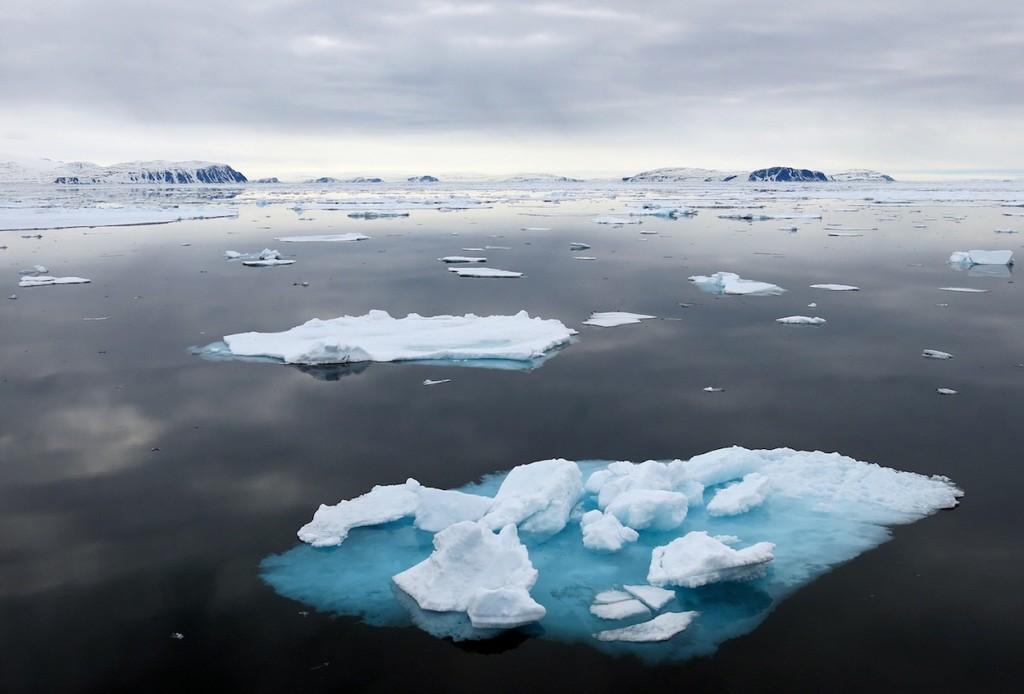 Больше Арктики!