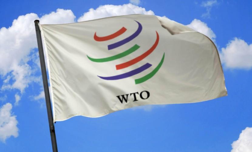 ВТО: вверх по лестнице ведущей вниз?