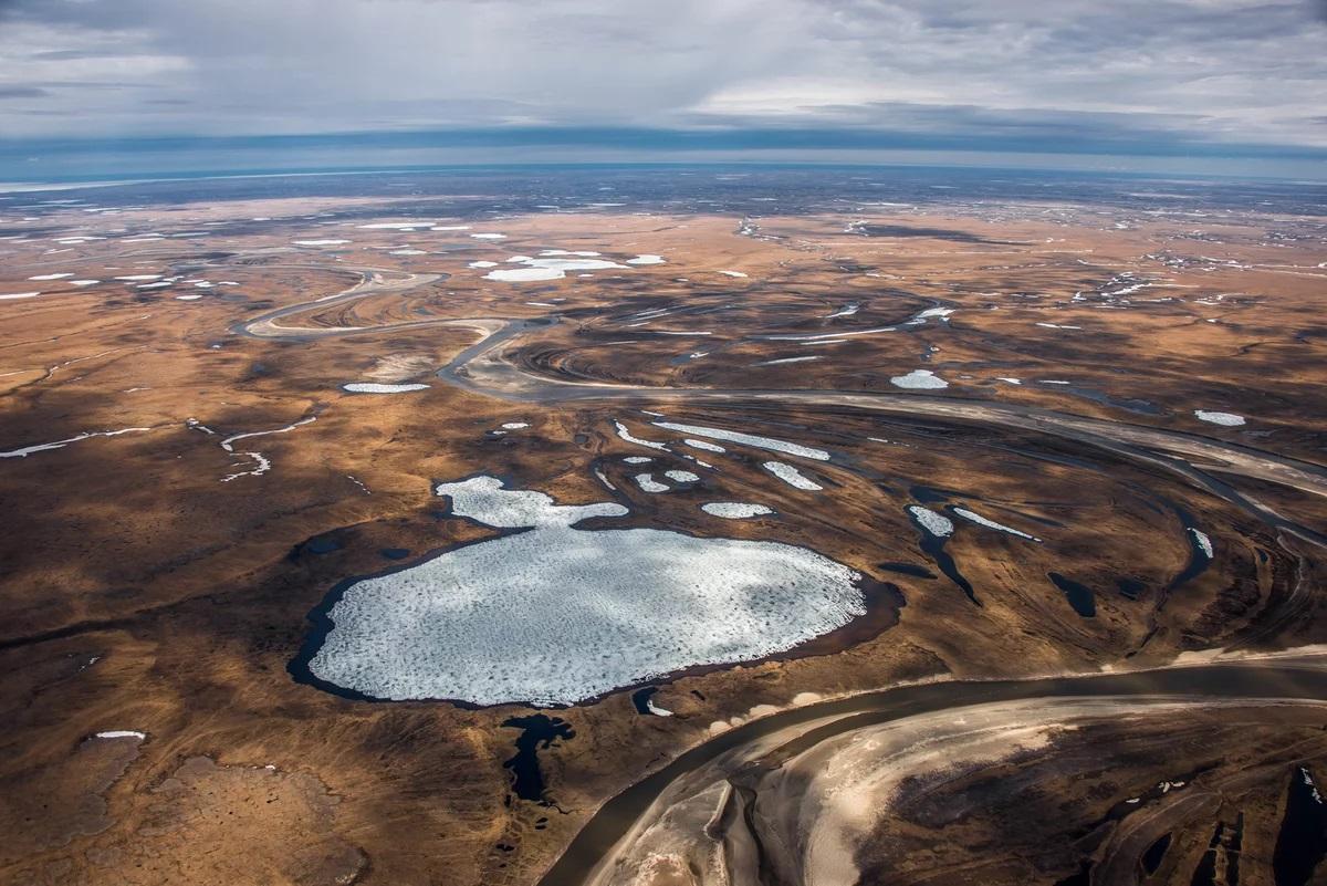 Усиление континентальности климата и адаптивная рекультивация нарушенных тундровых почв