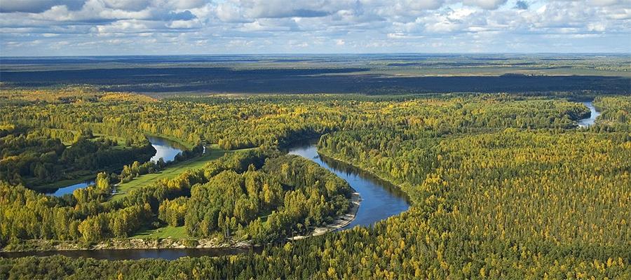 Ресурсную базу ЛУКОЙЛа в Западной Сибири пополнили 2 участка недр