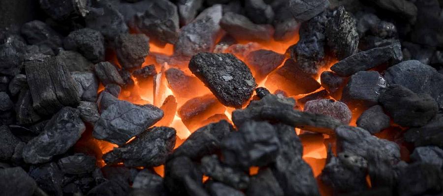 Русский Уголь заявил о росте запасов бурого угля в Приамурье