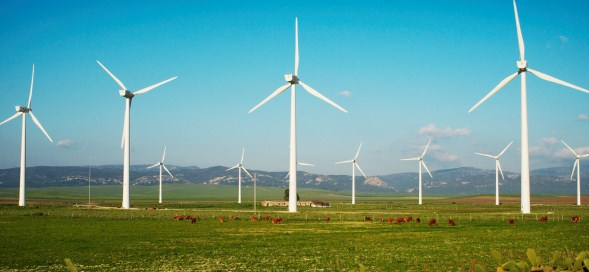 Woodmac: Wind and solar soared above coal for the 1st time