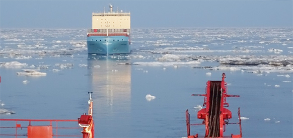 Maersk оценит коммерческую целесообразность перевозок по Северному морскому пути