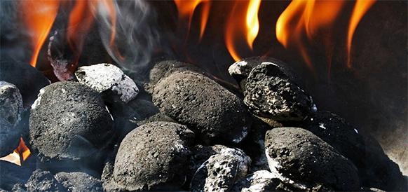 В Сибирском федеральном университете разрабатывается метод оценки самовозгорания бурого угля