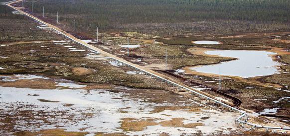 Транснефть подсчитывает потери от переноса сроков и сокращения объемов поставок Роснефтью в нефтепровод Заполярье - Пурпе