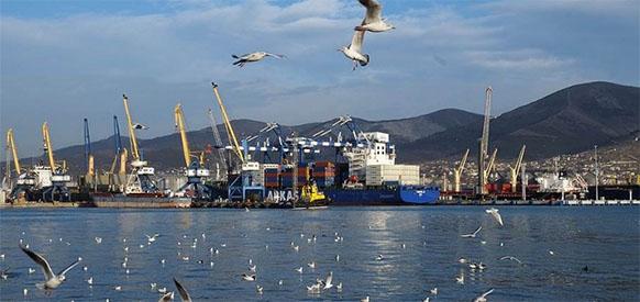 Транснефть увеличила долю участия в Новороссийском морском торговом порту до 60,62%