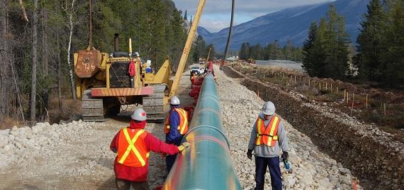 Kinder Morgan остановила большинство работ по нефтепроводу Trans Mountain в Канаде