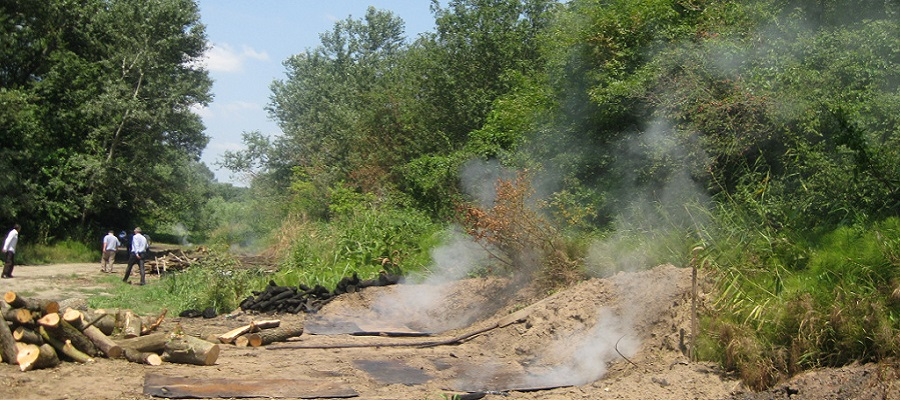 Углежогов не нашли. В Дагестане снова обнаружили незаконную добычу угля