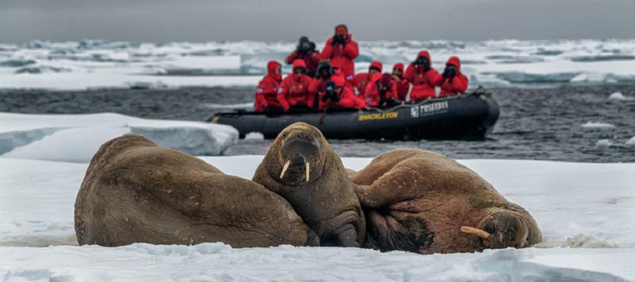 15 млрд руб. направят на новую госпрограмму развития Арктики