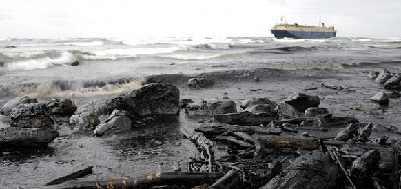 Бороться с разливами нефти в Арктике теперь будет проще: помогут морозоустойчивые микробы