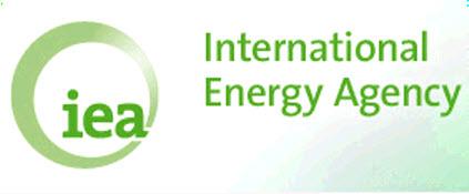 МЭА: спрос на углеводороды в 2016 г упадет на 0,1 млн барр/сутки
