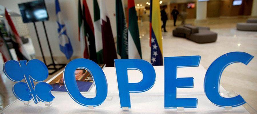 ОПЕК ждет увеличение разрыва между ростом спроса и избытком предложения на рынке нефти