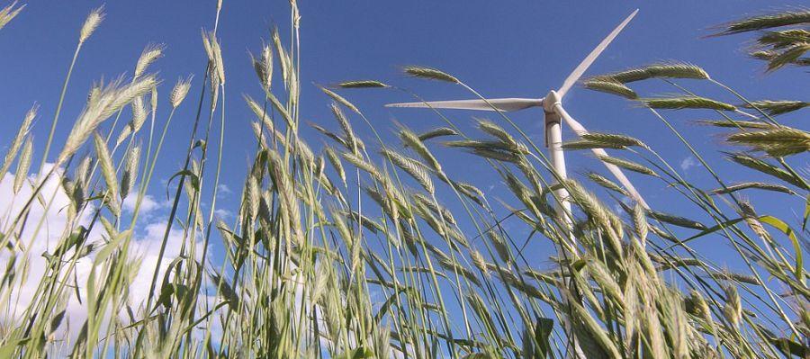 В 2020 г. в Белоруссии будет построена крупнейшая в стране ветряная электростанция