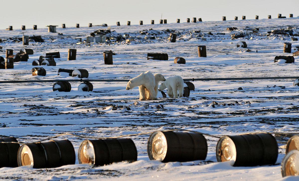 Экологические риски добычи нефти в Арктике