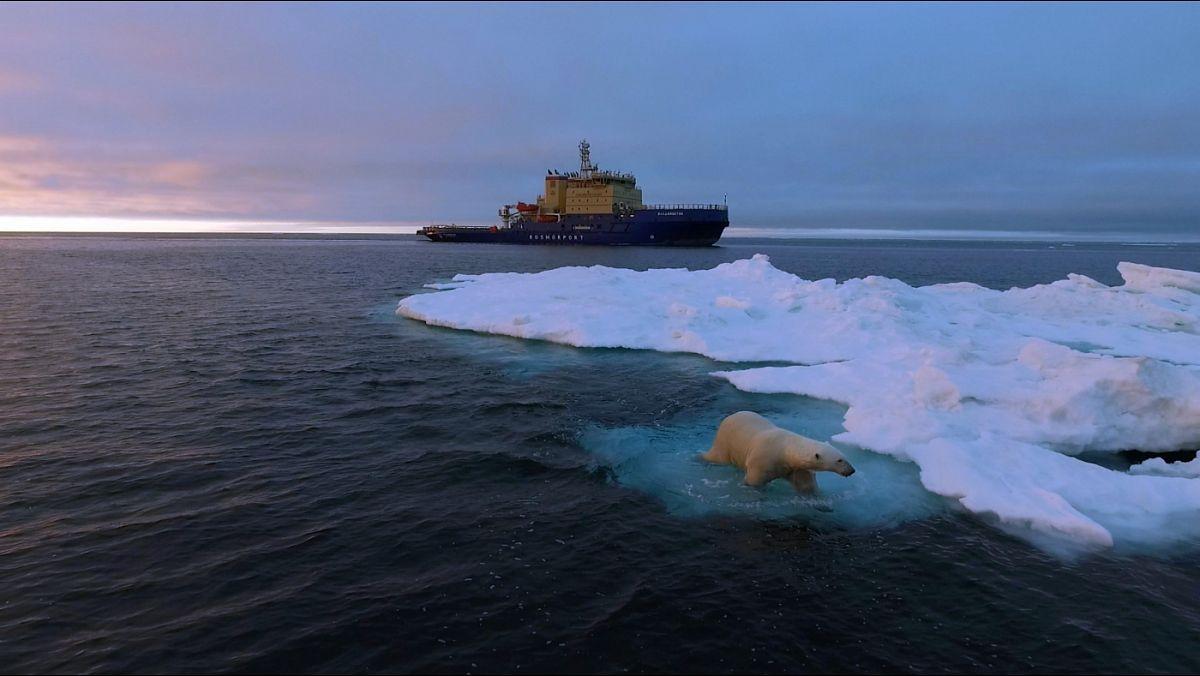 Геокриологические условия мелководного шельфа Карского моря