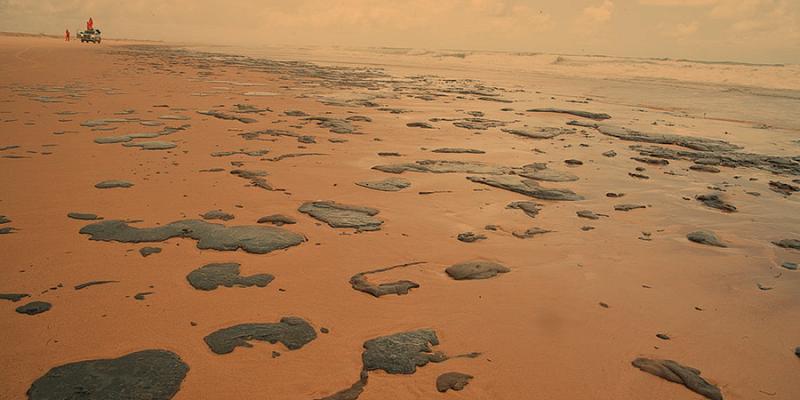Власти Бразилии хотят оштрафовать виновных в разливе нефти у берегов страны