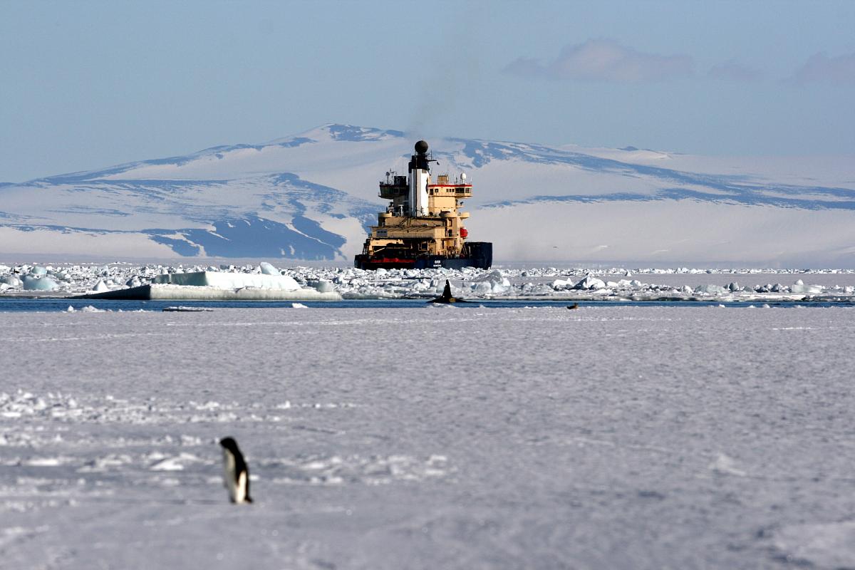 Арктическая доктрина России и стратегия морской деятельности