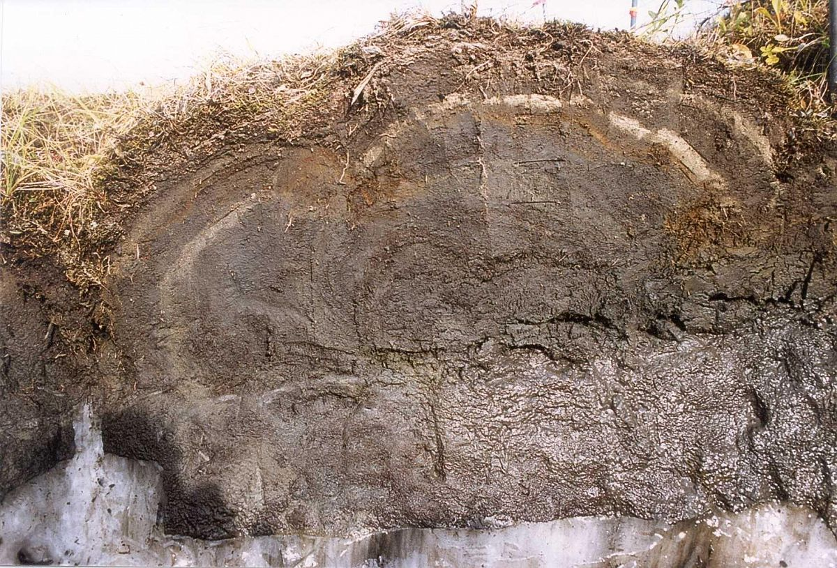 Повышение качества цементирования скважин в многолетнемерзлых горных породах