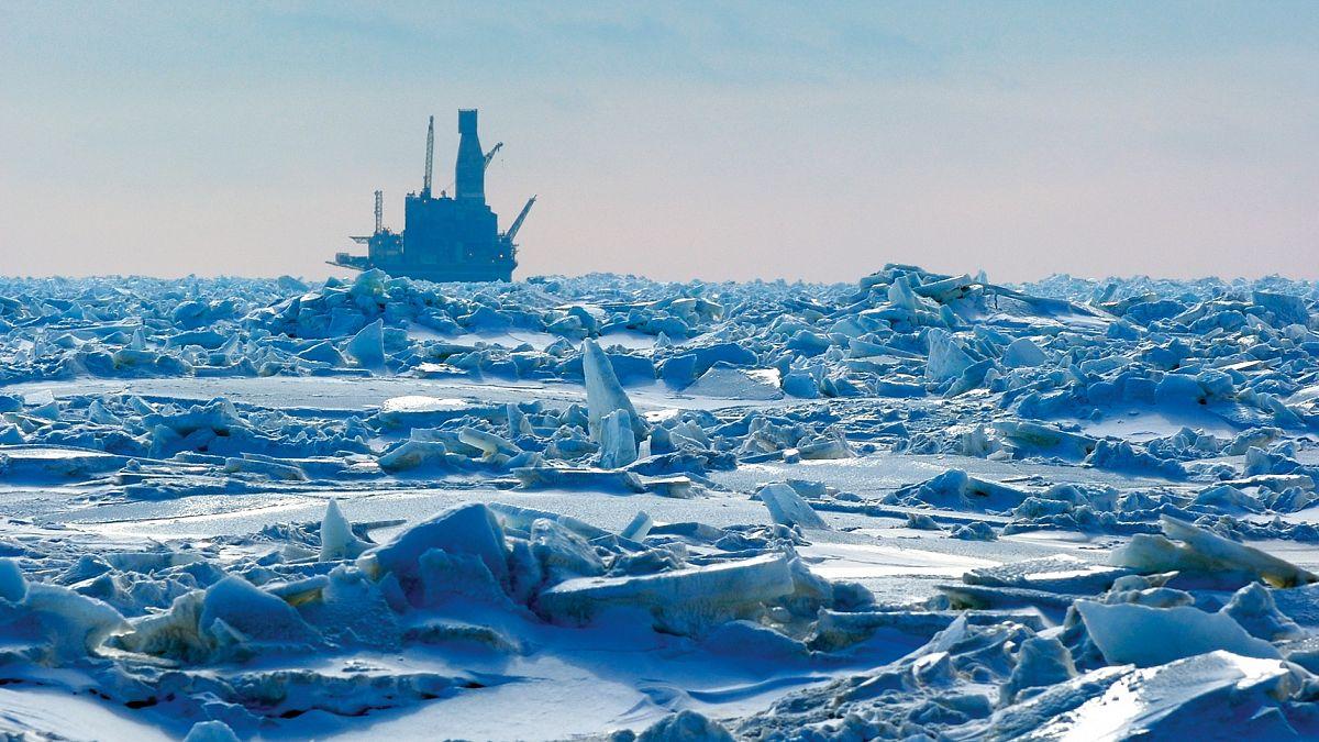 Сервис арктического уровня