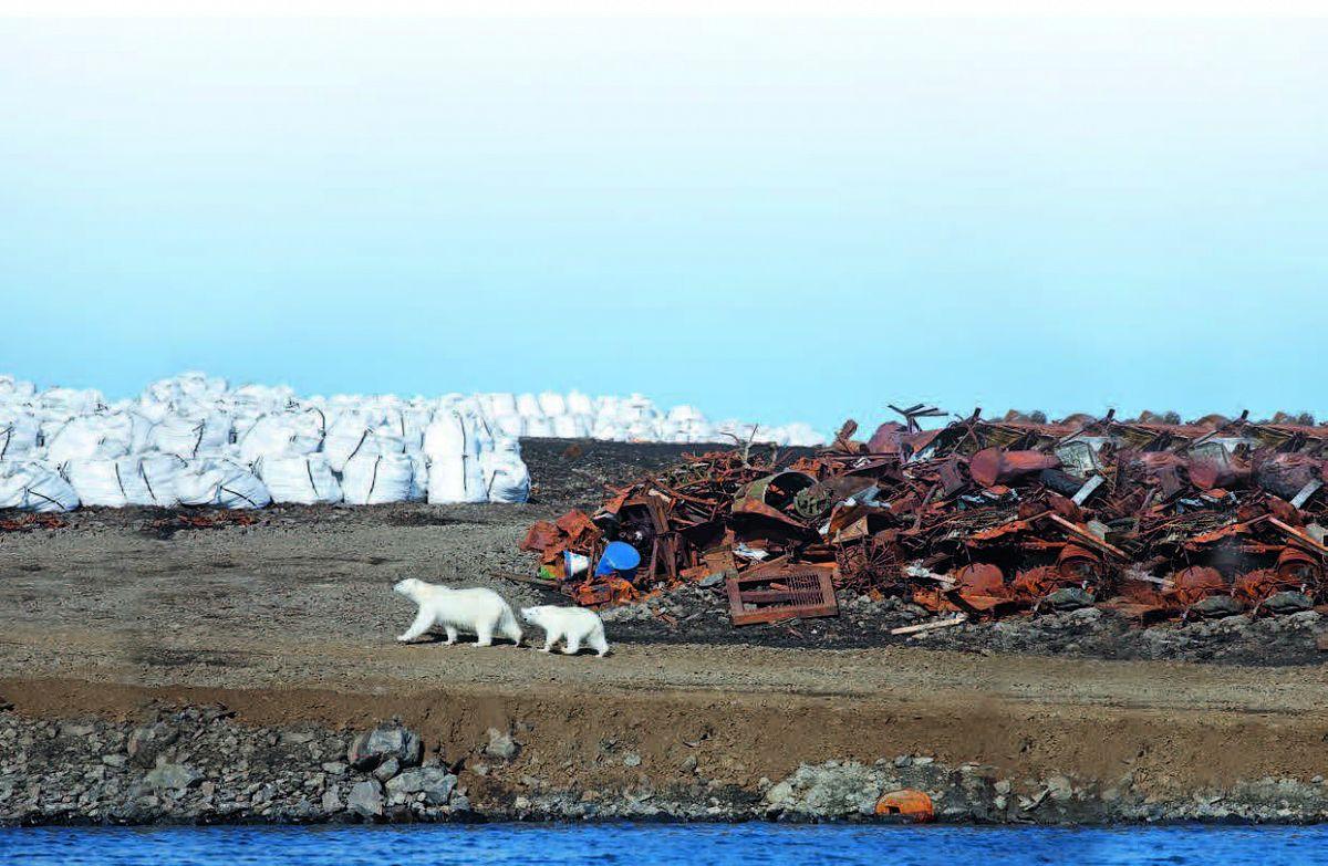 Экологические проблемы безопасности твердых отходов в Арктическом регионе